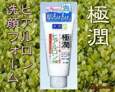 極潤(gokujyun)ヒアルロン洗顔フォームの通信販売画面へ