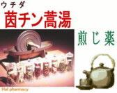 ウチダ 茵蔯蒿湯 煎じ薬の通販画面へ