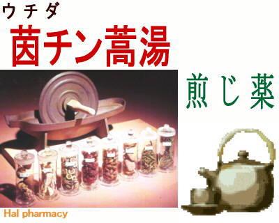 ウチダ 茵蔯蒿湯 煎じ薬