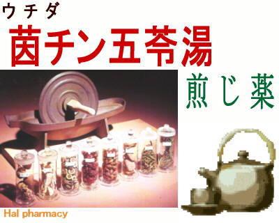 ウチダ 茵蔯五苓湯 煎じ薬