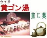 ウチダ 黄芩湯 煎じ薬の通販画面へ