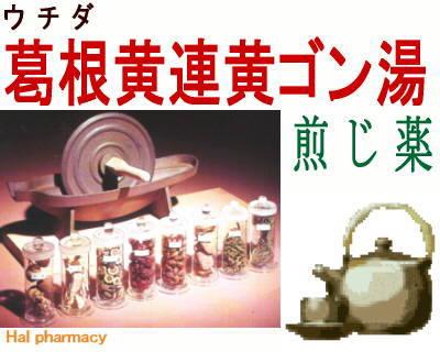ウチダ 葛根黄連黄芩湯 煎じ薬