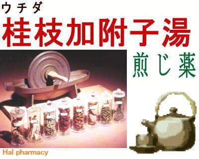 ウチダ 桂枝加附子湯 煎じ薬