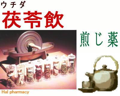 ウチダ 茯苓飲 煎じ薬
