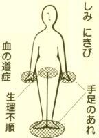 桂枝茯苓丸+薏苡仁