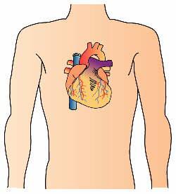 心臓にかかわる慢性症状