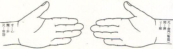 寸・関・尺の手の図